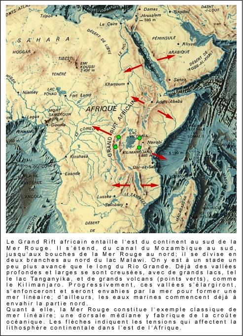 What Is Svt >> COURS DE QUATRIEME Archives - Page 2 of 11 - SVT A L'AFFICHE- MATHPHY-LEWEBPEDAGOGIQUESVT A L ...
